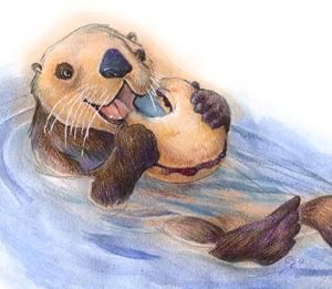 otter-biscuit-CaseyGirard
