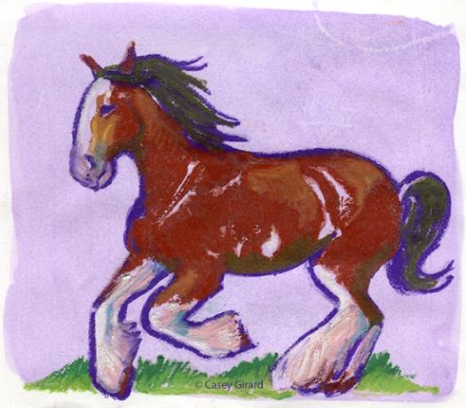 horse-CaseyGirard