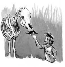 boy&horse-caseygirard6