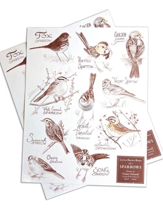 postersparrows-caseygirard