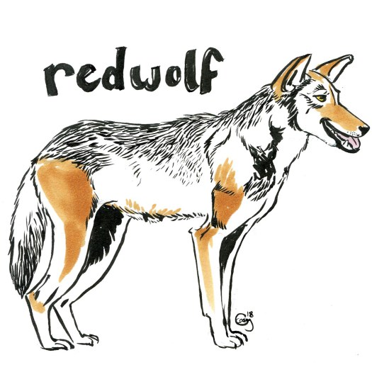 redwolf-caseygirard